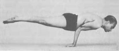 126-mayurasana-yoga-pose-iyengar