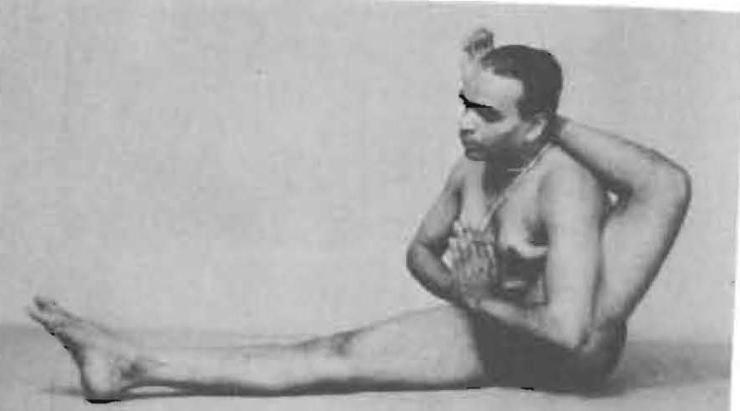 134-eka-pada-sirsasana-yoga-pose-iyengar